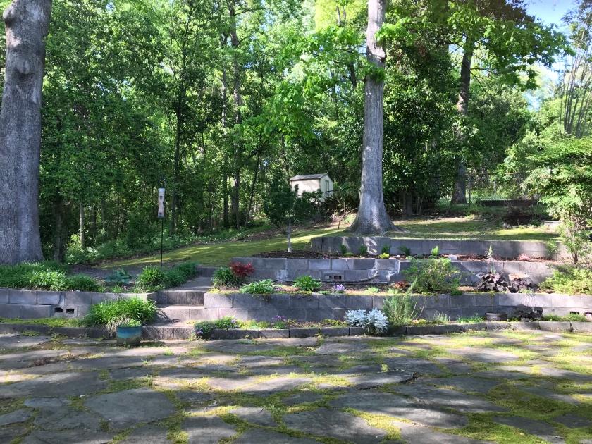 (c) Terri Robertson, T's Southern Garden Blog, 2018